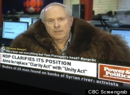 Former advisor to Stephen Harper Tom Flanagan voiced support for the freedom to view child pornography on Wednesday night during at talk at the University of Lethbridge in Alberta. Flanagan made headlines recently for wearing a bison-fur coat on CBC's