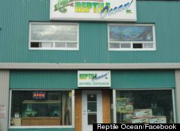 A reptile store owner under investigation for criminal negligence in the deaths of two boys after a large python escaped its enclosure had blood on his hands and shorts when police arrived at the scene in Campbellton, N.B., according to newly released court documents. (Facebook)