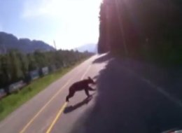 A motorcyclist's helmet cam caught a collision with a bear on a B.C. highway. (YouTube)