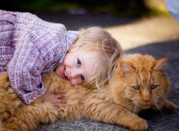 Saying goodbye to a foster pet can be difficult. (Getty Images)