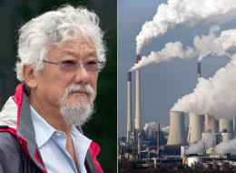 The David Suzuki Foundation says it's not too late for Canada to cut its carbon emissions to avoid the worst effects of global warming. (CP/AP)