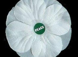 Veteran Affairs Minister Julian Fantino called white poppies
