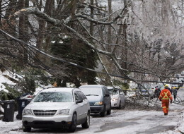 A Toronto Hydro worker surveys the damage on a street near Kingston Road and Victoria Park Avenue in Toronto following an ice storm, on Monday, Dec. 23, 2013. (THE CANADIAN PRESS/Matthew Sherwood)