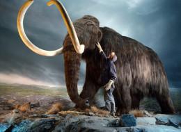 Jonathan S. Blair/National Geographic