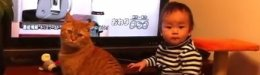 Image for This Video Of An Unimpressed Baby And Cat Duo Has A Perfect Ending