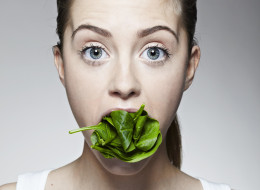 Vegetarians, don't read this! Plants can hear themselves being chewed