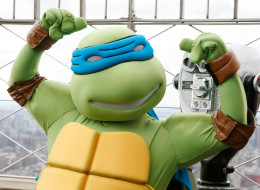 Teen Disguised As Ninja Turtle Robs Store