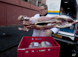 Ritually slaughtered lamb is delivered at a halal butcher shop in The Hague, Netherlands, Tuesday Dec. 13, 2011. Political support for a ban on the ritual slaughter of animals without stunning them first, as required by centuries-old Jewish and Muslim dietary traditions, has weakened as the Dutch senate debates the legislation. (AP)