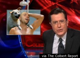 via The Colbert Report