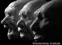 Sheckenberg Institute