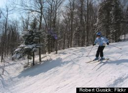 A skier glides down the tree-lined slopes at Okemo Mountain Resort.