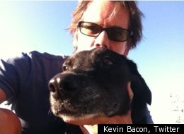 Kevin Bacon, Twitter