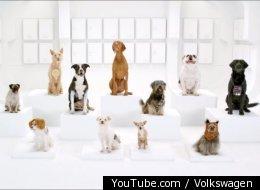YouTube.com / Volkswagen