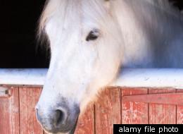 alamy file photo
