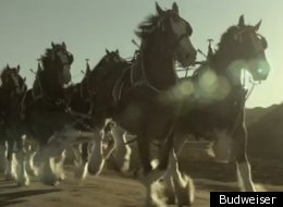 This Budweiser ad takes a look back at the end of Prohibition.