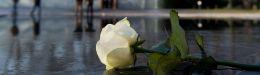 Image for Διεθνής Ημέρα Μνήμης του Ολοκαυτώματος: Φόρο τιμής στα θύματα απέτισε το γερμανικό κοινοβούλιο