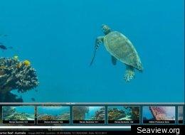 Seaview.org