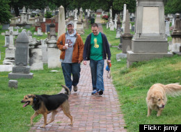 Dog walkers have helped maintain Congressional Cemetery
