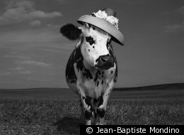 © Jean-Baptiste Mondino