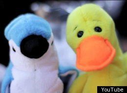 A blue jay and yellow duck take on the roles of Katniss and Peeta, respectively.