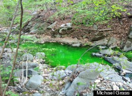 Soapstone Valley's stream was running green on Tuesday evening.