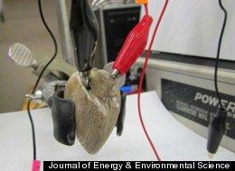 Journal of Energy & Environmental Science