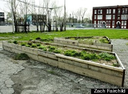 The beds from this North End sensory garden are being moved to help expand a similar garden at Scripps Park in Detroit's Woodbridge neighborhood.