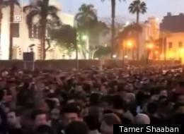 Tamer Shaaban