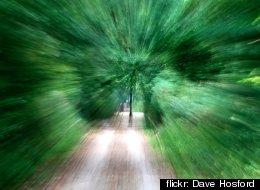 flickr: Dave Hosford
