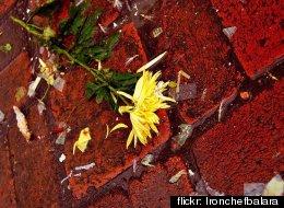 flickr: Ironchefbalara