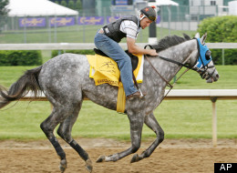 Exercise rider Mick Jenner checks Kentucky Derby entry Imawildandcrazyguy's stride during a workout at Churchill Downs track in Louisville, Ky., Wednesday, May 2, 2007.