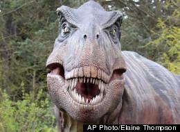 The namesake of Tyrannosaurus Rex Joseph Gold.