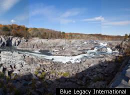 Blue Legacy International