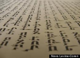 Nava Levine-Coren