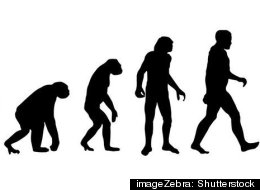 Gallup poll shows little change in percentage of Americans who accept creationist ideas.