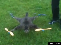 Look up! It's Orvillecopter. Dutch artist Bart Jansen turned his dead cat into a remote-controlled helicopter.