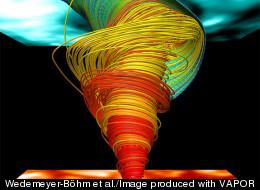 Wedemeyer-Böhm et al./Image produced with VAPOR