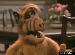 ALF returns to TV on The Hub for a week.
