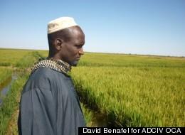 David Benafel for ADCIV OCA