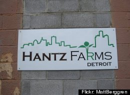 The city of Detroit is moving towards a land deal with Hantz Farms, an urban agriculture venture with big plans and lots of critics with in the urban farming movement. (Flickr: MattBerggren)