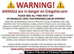 Salem Friends of Felines/Facebook