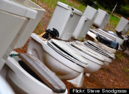 Two thieves in Kristianblad, Sweden, are accused of stealing a toilet seat from their local courthouse.