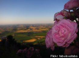 Flickr: fabulousfabs