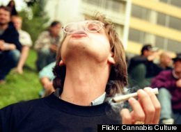 Flickr: Cannabis Culture