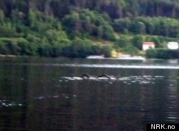 Sea Serpent Spotted In Norway Lake