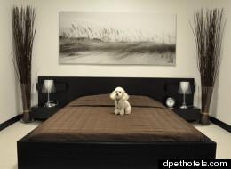 dpethotels.com