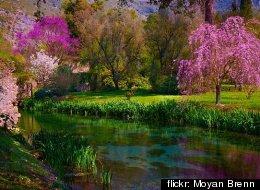 flickr: Moyan Brenn