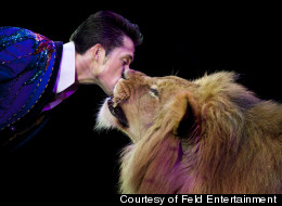 Alexander Lacey, an animal trainer for Ringling Brothers and Barnum & Bailey Circus, shares an intimate moment with one of his lions.