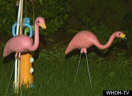 Arthur O'Neil has had 40 pink flamingo statues stolen from his home since May. The thieves returned one with a ransom note.