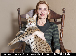 biggest cat in the world guinness records honorees - Smallest Cat In The World Guinness 2013